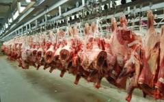 Экспорт баранины из Дагестана за год вырос в 26 раз