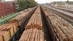 Матвиенко предлагает ввести эмбарго на вывоз леса из России