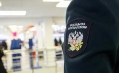 В ФНС объяснили проверки крупных российских агрохолдингов