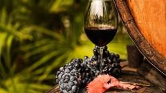 Роскачество назвало лучшие кубанские, донские и крымские вина
