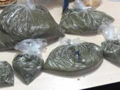 В Адыгее задержан мужчина, хранивший в тайнике крупную партию марихуаны