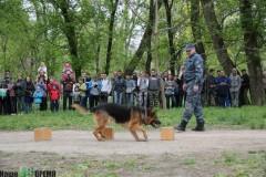 Ростовскому «Мангусту» исполняется 28 лет