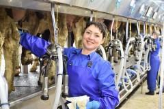 Кубань направит 662 млн рублей на повышение продуктивности в молочном скотоводстве