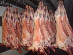 На Дону уничтожили 2350 кг баранины сомнительного качества