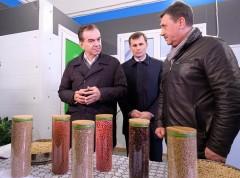 Губернатор Кубани посетил центр подготовки семян в Тихорецком районе