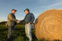 Кубань выделила 420 млн рублей на развитие сельхозкооперации