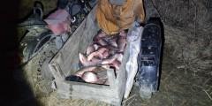 Донские пограничники задержали двух браконьеров со 150 кг рыбы