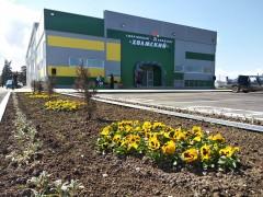 В Холмской открылся малобюджетный спортивный комплекс шаговой доступности