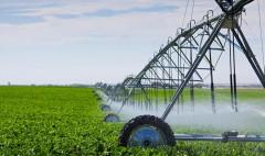 На Кубани введут 15 тысяч га мелиорируемых сельхозземель