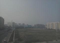 Из-за выжигания камыша Ростов окутал смог