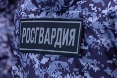 В Новороссийске по «горячим следам» задержали похитителя коллекции монет
