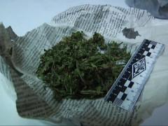 В Адыгее 42-летний мужчина за сбыт наркосодержащих растений получил 8 лет «строгача»
