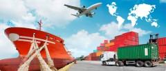 Развитие кубанского экспорта