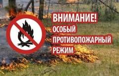 Особый противопожарный режим ввели в Невинномысске