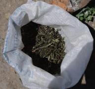 В Кошехабльском районе Адыгеи изъята крупная партия марихуаны