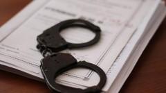В Калмыкии будут судить дончанина, ударившего и оскорбившего полицейского