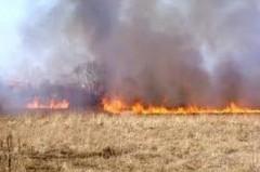 В Ростовской области сгорело 220 га полей вместе с урожаем