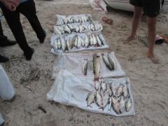 В Ейском лимане поймали рыбака-браконьера