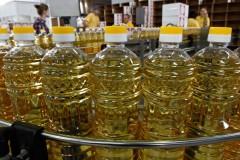 Кубань увеличит экспорт масла в три раза