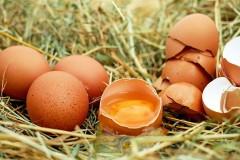 Петра Порошенко пытались забросать яйцами после допроса