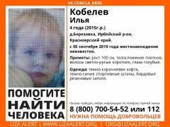В Красноярском крае сотни людей ищут пропавшего четырехлетнего мальчика