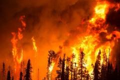 Под Иркутском горит цех деревообработки