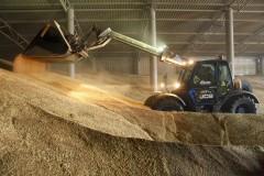 На Ставрополье замдиректора агрофирмы обвиняют в присвоении зерна