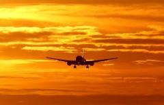 Госдума: авиасообщение с Грузией могут восстановить уже скоро