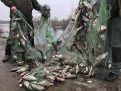 ФСБ: Более 900 тысяч рублей ущерба морским биоресурсам Азовского моря нанесли промысловики