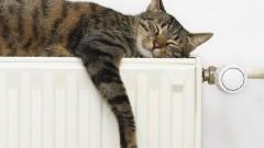 Невинномысская ГРЭС начала подачу тепла в дома жителей города