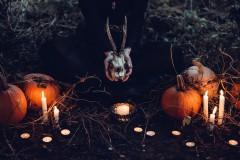 Заслуженный юрист России Иван Соловьев призвал «не наряжать детей в ведьм и чертей на Хэллоуин!»