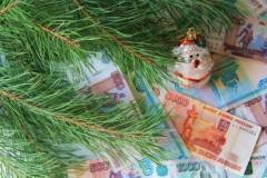 Расходы россиян на Новый год выросли на 14%