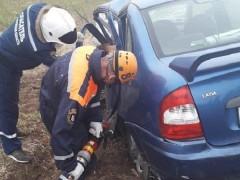 При ДТП в Мартыновском районе Ростовской области погиб водитель