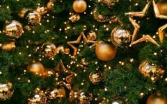 Жители Омска пожаловались на зараженные жуками новогодние елки