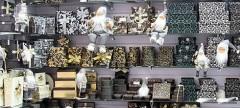 На Ставрополье будут развивать производство сувенирной продукции