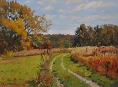 В Краснодаре проходит художественная выставка Елены Саяпиной