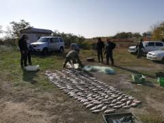 Донской браконьер заплатит полумиллионный штраф за незаконный улов