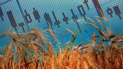 Инфляция на юге России в начале 2020 года продолжила снижение на фоне высокого урожая зерна прошлого года