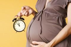 Работодатели: женщин нужно спрашивать о перспективах появления детей при трудоустройстве