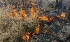 В Хакасии девочки-подростки устроили пожар ради эффектного селфи