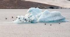Инженерные войска Вооруженных сил РФ ведут поиски питьевой воды в Арктике