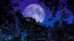 В Кремле отказались комментировать планы США добывать ископаемые на Луне