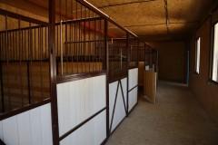 В невинномысском парке «Шерстяник» появился «Конный двор»