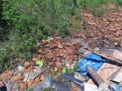 В Ростове-на-Дону ветспециалисты проинспектируют место предполагаемой свалки биологических отходов