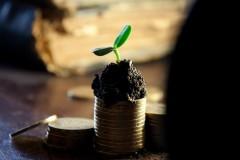 Опрос: большинство жителей СКФО одобряют идею введения безусловного базового дохода