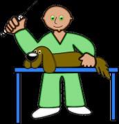 В Таганроге привить животное от бешенства можно будет рядом с домом