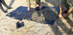 Под Темрюком трое браконьеров попались с креветками на 500 тысяч рублей