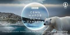 «Семь миров, одна планета» Дэвида Аттенборо предстанут на телеканале «Моя Планета»
