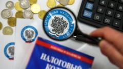 Депутат: Эксперимент по взиманию налога с дохода самозанятых граждан оказался успешным