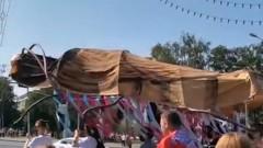 Белорусы принесли на митинг таракана длиной 3 метра